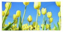 Tulips Holland Michigan 67 Beach Sheet