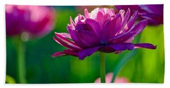 Tulips In Bloom Beach Sheet