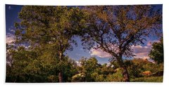 Two Old Oak Trees At Sunset Beach Towel