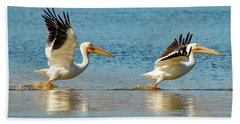 Two Pelicans Taking Off Beach Sheet