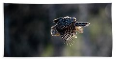 Ural Owl Flying Against The Light To Catch A Prey  Beach Towel