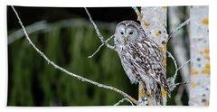 Ural Owl Perching On An Aspen Twig Beach Towel