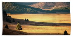 Valles Caldera Detail Beach Towel