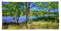 Beach Sheet featuring the photograph Viele Lake 4 by Dan Miller