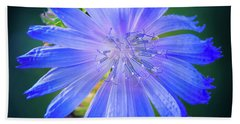 Vivid Blue Chicory Blossom Close-up With Its Delicate Petals And Stamen Beach Towel