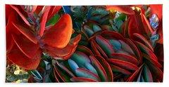 Vivid Paddle-leaf Succulent Beach Sheet