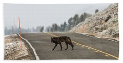 Beach Towel featuring the photograph W55 by Joshua Able's Wildlife