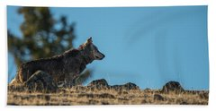 Beach Towel featuring the photograph W61 by Joshua Able's Wildlife