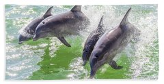 Wake Surfing Dolphin Family Beach Towel