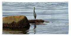 Wary Heron Beach Towel