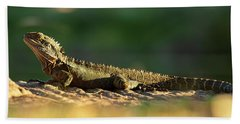 Beach Towel featuring the photograph Water Dragon Lizard Outdoors by Rob D Imagery