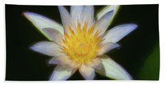 Water Lily 101 Beach Towel