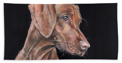 Weimaraner Portrait Beach Towel