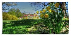 Wentworth Daffodils Beach Towel
