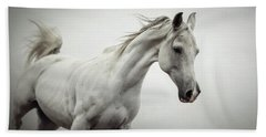 Beach Sheet featuring the photograph White Horse On The White Background Equestrian Beauty by Dimitar Hristov