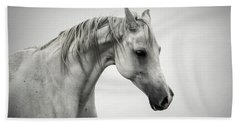 Beach Towel featuring the photograph White Horse Winter Mist Portrait by Dimitar Hristov