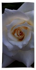 Beach Towel featuring the photograph White Rose by Jeff Iverson