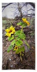 Wild Desert Sunflower Beach Sheet