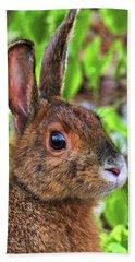 Wild Rabbit Beach Sheet