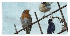 Winter Birds Beach Towel
