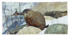 Winter Groundhog Beach Towel