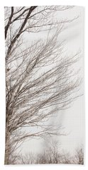Winter Hoarfrost Beach Towel