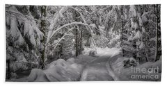 Beach Towel featuring the photograph Winter In The Forest by Edmund Nagele