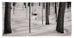 Beach Towel featuring the photograph Winter Light In The Forest by Jeff Sinon