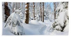 Beach Towel featuring the photograph winter path, Harz by Andreas Levi