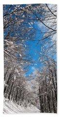 Winter Road Beach Towel