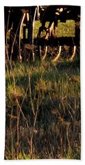 Beach Towel featuring the photograph Winter Thistles And Cultivator by Jerry Sodorff