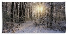 Winter Woods Sunlight Beach Towel