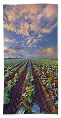 Beach Towel featuring the photograph With A Faith Born Not Of Words But Of Deeds by Phil Koch