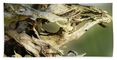 Beach Towel featuring the photograph Wood Log In Nature No.14 by Juan Contreras