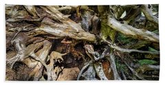 Beach Towel featuring the photograph Wood Log In Nature No.8 by Juan Contreras
