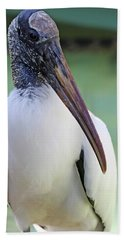 Wood Stork 40312 Beach Sheet