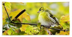 Beach Towel featuring the photograph Yellow Bird by Top Wallpapers