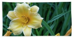 Yellow Day Lily Beach Towel