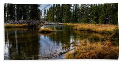 Beach Towel featuring the photograph Yellowstone National Park by Scott Read