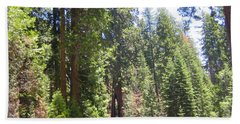 Yosemite National Park Mariposa Grove Tall Twin Trees Beach Sheet