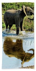 Young Elephant Playing In A Puddle Beach Towel