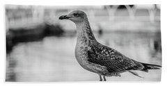 Young Seagull Beach Towel