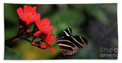Zebra Longwing Butterfly Beach Sheet