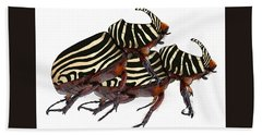 Zebra Pattern Rhinoceros Beetle 2 Beach Towel