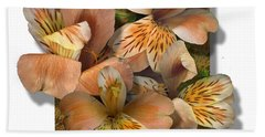 Designs Similar to Peruvian Lily by Stan Bowman