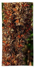 Monarch Butterfly Migration Beach Towels