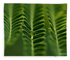 A Green Drop Fleece Blanket