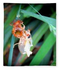 Cicada Coming Out Fleece Blanket
