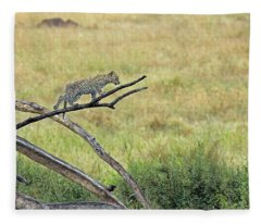 Leopard Cub In Serengeti Fleece Blanket