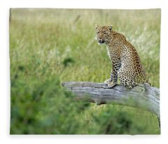 Leopard In Serengeti Fleece Blanket